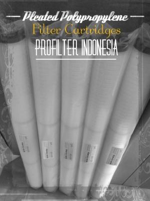 https://www.filtercartridgeindonesia.com/upload/PFI%20Pleated%20Filter%20Cartridge%20Indonesia_20180720024858_large2.jpg