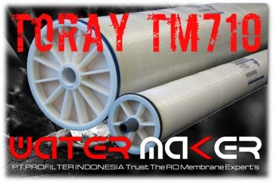 https://filtercartridgeindonesia.com/upload/d_Toray%20TM710%20RO%20Membrane%20PT%20PROFILTER%20INDONESIA_20200128091157_20200520204406_large2.jpg