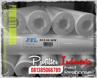 https://www.filtercartridgeindonesia.com/upload/d_d_d_ALX%20Cartridge%20Filter%20Indonesia_20200227111122_20200327173257_large2.jpg